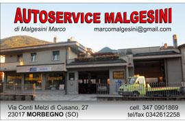 Autoservice Malgesini