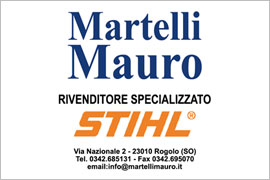 Martelli Mauro rivenditore Stihl Rogolo